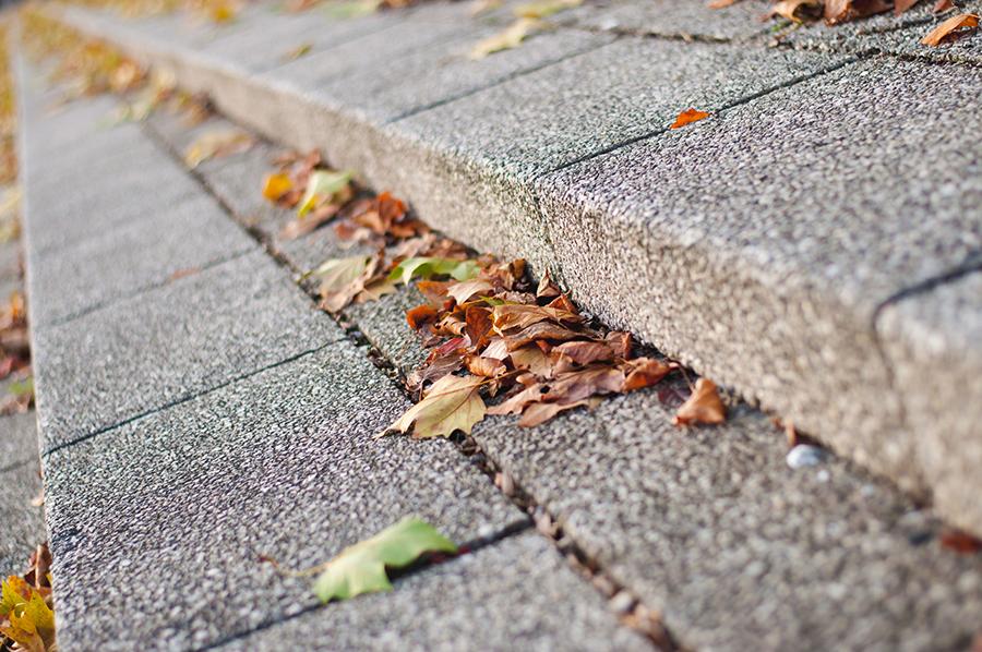 Hauswartung: Sträucher schneiden, Unkraut jäten und Laub rechen